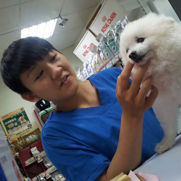 問個GO寵物美容小sho(秀)老師sq